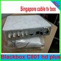 2017 caja de cable tv receptor de la caja negra de Singapur starhub set top box BLACKBOX C801 Más builtin wifi buena resolución hd + adapte wifi