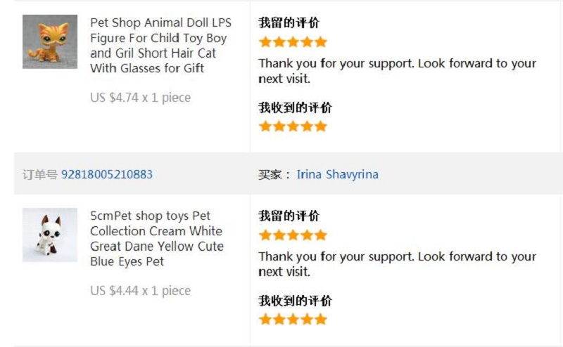 Detail Feedback Questions About Pet Shop Lps Toy Shorthair Cat 23