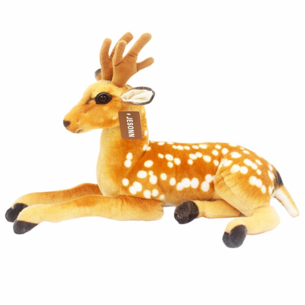 deer601