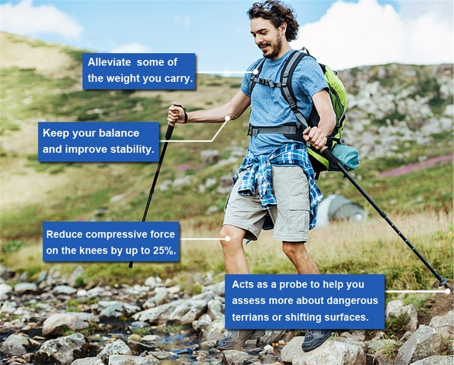 EVA Handle 4-Section Adjustable Walking Sticks 6