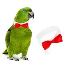 Одежда с птицами попугай милый галстук-бабочка галстук для маленький средний большой птицы