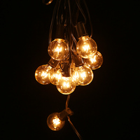 25FT E12 Light String Ball Fixtures Ball String Light Christmas Outdoor 25 Globe Bulbs Garland Halloween Lights