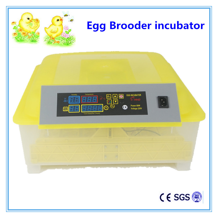 Egg brooder incubator automatic 48 mini china cheap Chicken egg incubator hatching machine chicken egg incubator hatcher 48 automatic mini parrot egg incubators hatcher hatching machines