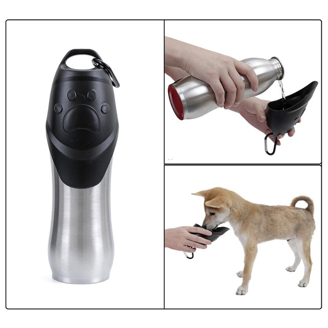 Dog's Stainless Steel Water Bottle