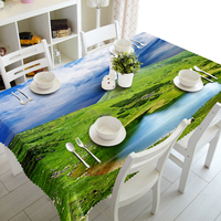 Custom 3D Tablecloth The Vast Green meadow Pattern Waterproof Washing cloth Thicken Rectangular Wedding table cloth Home Textile