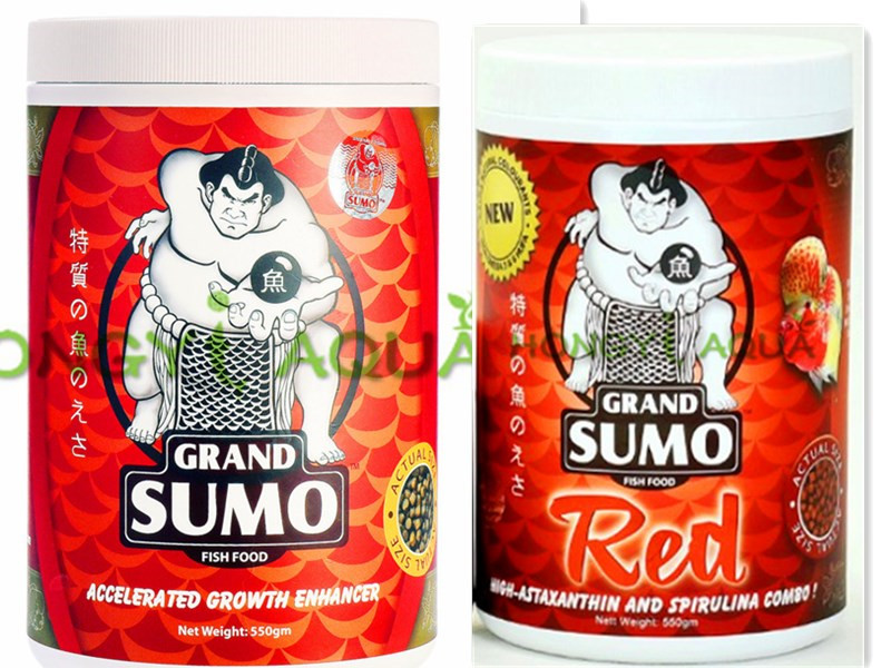 Grand Red Head Original Rajah Cichlasoma Horn Flower Horn Fish Food Accelerated Growth Enhancer Hi astaxanthin