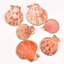 Natural seashell Gold Plated sector shells for earring DIY handmade charms pendant Home Drop decoration 5pcs TRS0298(China)