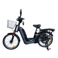 48 в электрический велосипед с 48 В 350 Вт/500 Вт задний концентратор двигатель система прямого привода два сиденья Тяжелая загрузка емкость Ebike