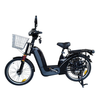 48v Electric Bike with 48v 350w/500w Rear Hub Motor Direct Drive System Two Seat Heavy Loading Capacity Ebike 30 50km/h E Bike