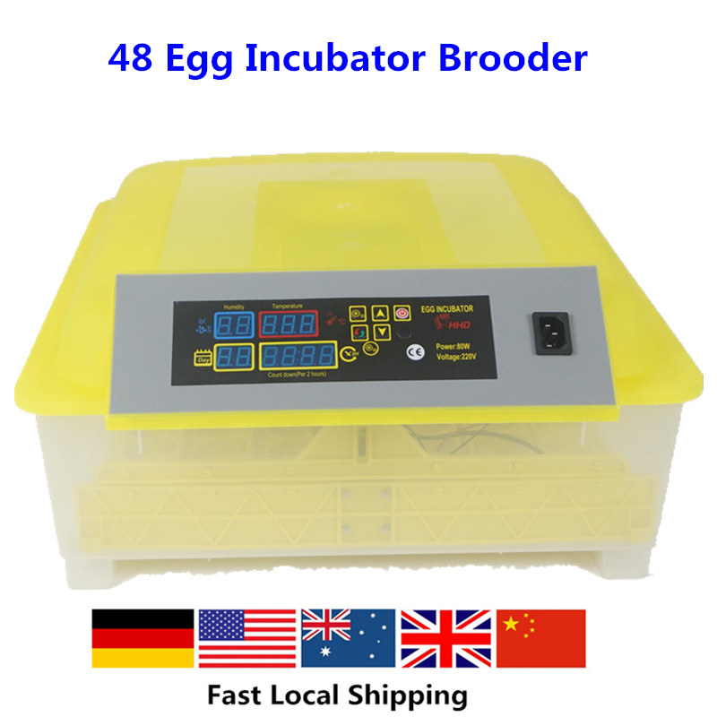 48  Mini Eggs Incubator Automatic  Machine Advance Turn Tray Hatching Egg Incubator CE Approved Ship From Germany automatic locking cylinder washing machine carriage child thickening adjustable tray mini mobile base frame