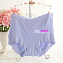 Plus Size Sexy Panties Underwear Women Sexy Briefs Wholesale Sales Section XXXXL 100KG AW8054