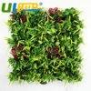 Artificial Boxwood Panels 48pcs 25x25cm Decorative Ivy Fence Wall Plastic Plants On Sales Garden Ornaments G0602A002
