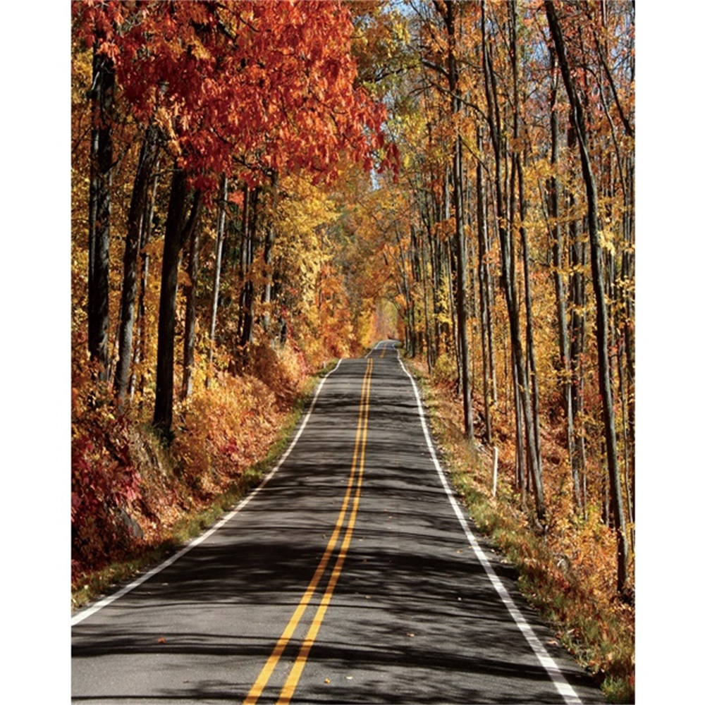 Laeacco Canvas Calligraphy Painting Autumn Forest Trees Road Posters and Prints Wall Artwork Picture Living Room Home Decoration in Painting Calligraphy from Home Garden
