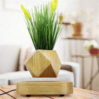 Wood Garden Decoration Flower Pots Plants In The Center of The Air Suspension Bonsai Plants Floating Magnetic suspension Flower