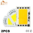 2Pcs LED Lamp Chip COB 100W 50W 30W 20W 15W 10W 220V 240V LED COB Chip Cold/Warm White Smart IC For DIY LED Spotlight Floodlight