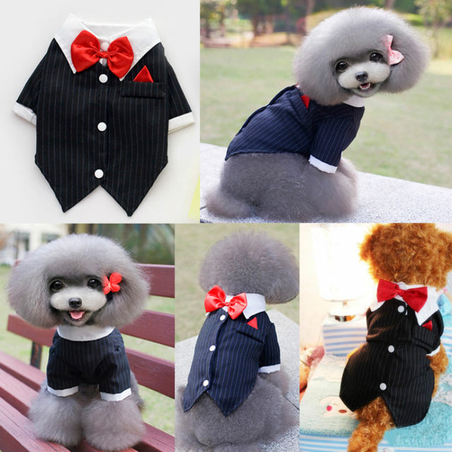 Online Shop Cat Puppy Clothes Dog Wedding Dress Tuxedo Suit Coat ...