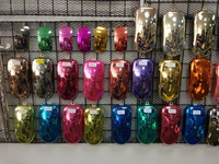 Chrome Plating Spray Paint Special Car Paint Plastic Coating Appliance Paint Usage Spray On Chr Effect