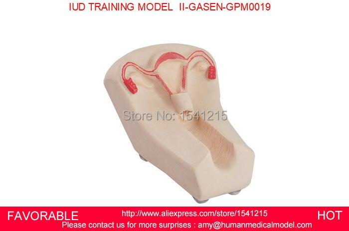 NURSING MANIKIN FEMALE IUD BIRTH CONTROL MODEL FEMALE CONTRACEPTION SIMULATOR IUD MODEL IUD TRAINING MODEL GASEN-GPM0019 все цены