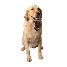 Adjustable Pet Dog Bow Tie with Necktie Clothes Neck Strap Cat Grooming Accessories Handsome for Festival Decor