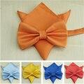20 colores clásicos Bowtie sólido juego de los hombres vestido de boda pajarita de mariposa Bowtie Pocket Square pañuelo traje Bowtie Set