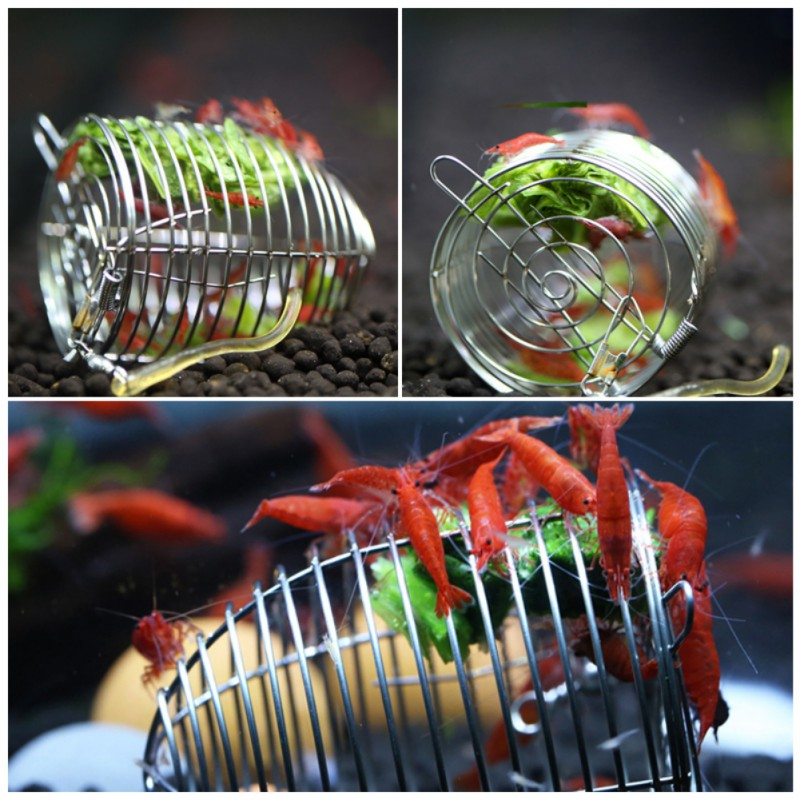 New Shrimp Pet Feed Ornaments Durable Vegetable Feeding Cage Basket Aquatic Pets Stainless Steel Aquarium Crystal Shrimp Feeder