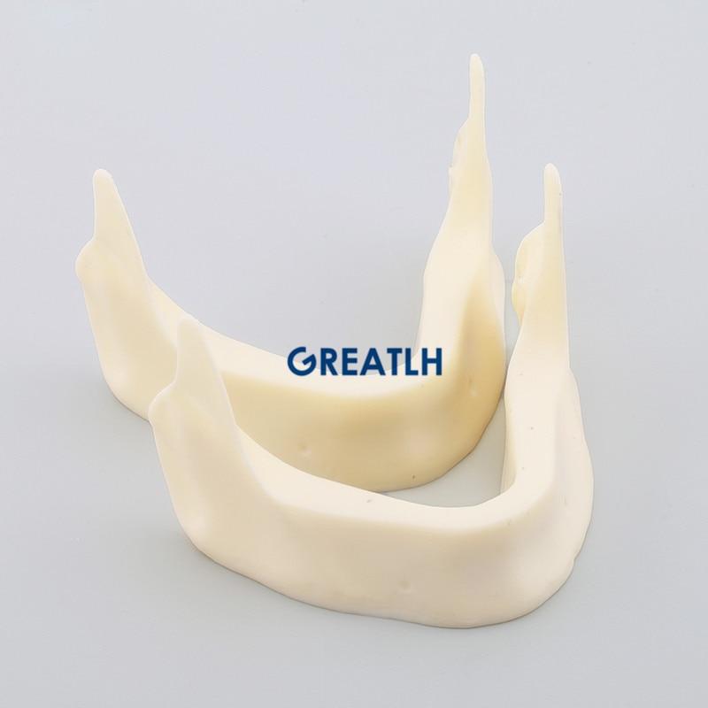 2pcs Dental Model M2025 - The Development of Jaw Lower2pcs Dental Model M2025 - The Development of Jaw Lower