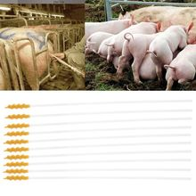 10 шт одноразовые свиньи Овцы искусственное осеменение порода катетер трубчатый стержень