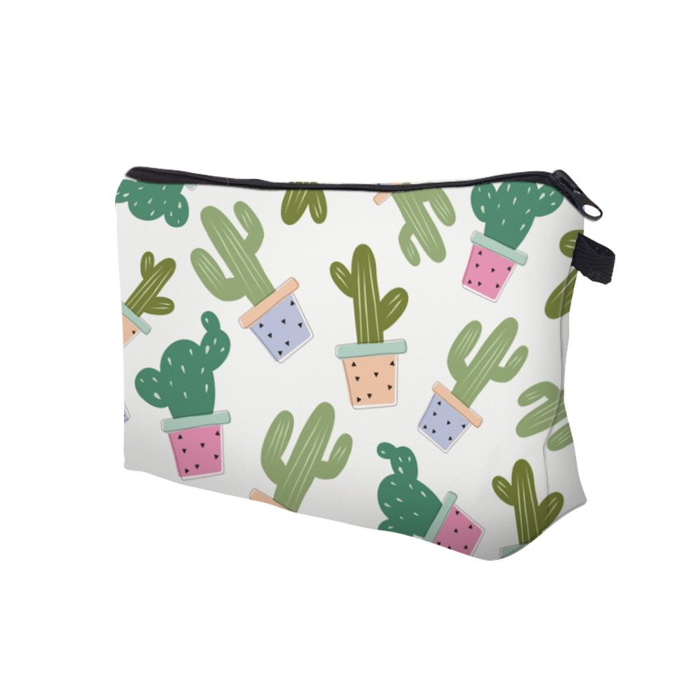 35509 kaktusy -