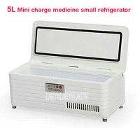 5L Интеллектуальные Переменной частоты инсулина охлажденных box Портативный Холодильный шкаф мини заряд медицины небольшой холодильник