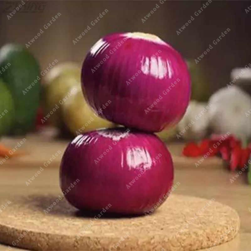 100 個中国有機新鮮なおいしいダーク紫タマネギ盆栽多年生健康栄養調理野菜