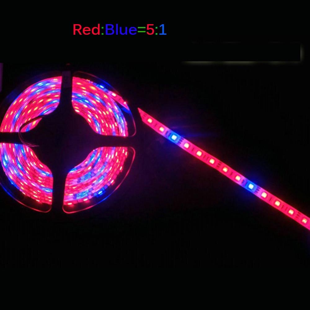 LED-växtväxelljus 5050 LED-remsa DC12V Rödblå 3: 1, 4: 1, 5: 1, - Professionell belysning - Foto 3