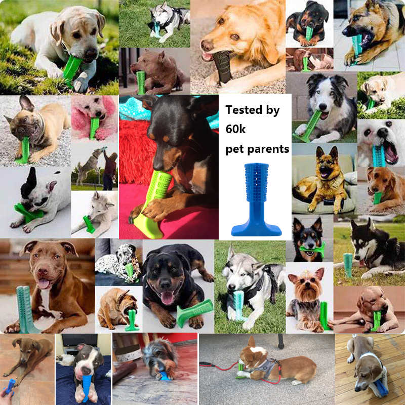 ซิลิโคนแปรงสีฟันสำหรับสุนัขสัตว์เลี้ยงสัตว์เลี้ยงสัตว์เลี้ยงสุนัขเคี้ยวของเล่นตุ๊กตาสุนัขขนาดเล็กแปรงสีฟัน Stick Perfect สุนัขฟัน Care ผลิตภัณฑ์ทำความสะอาด mo