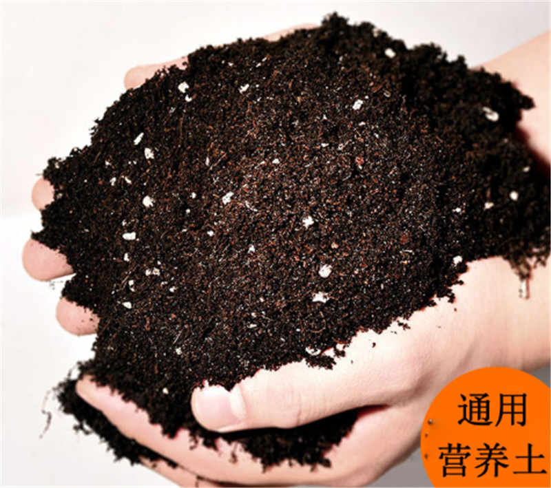Free shipping, 10g / bag, Organic flowers and vegetables soil peat and breathable soil nutrients, gardening articles, composite