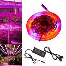 Светодио дный 5 м 5050 Светодиодные лампы для роста растений DC 12 В в водостойкий Fite de Growing светодиодные полосы роста растений свет набор с 5A EU/US адаптер питания