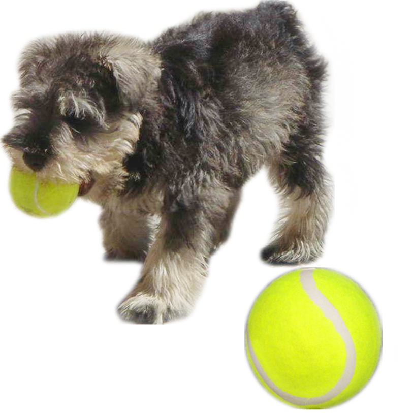 Interactive Dog Toys Pet Puppy 1 PC Rubber Training Tennis ...