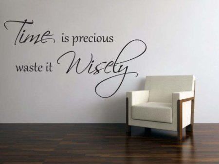 Time is precious waste it wisely,Vinyl Art Wall Quote Expressions ...