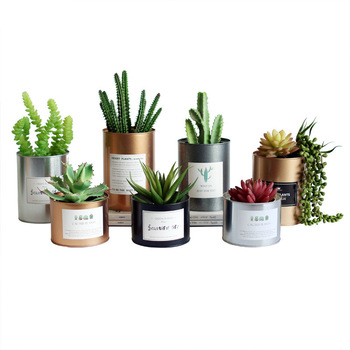 Nordic Style Metal Can Desk Planter 1