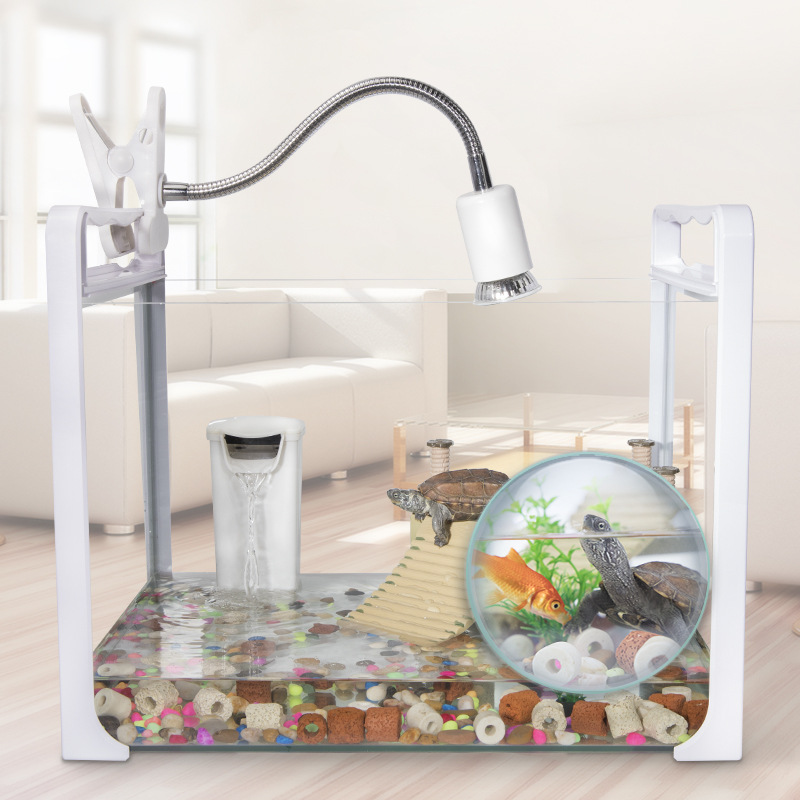 Cylindre de tortue avec plate-forme de séchage réservoir d'eau en verre brésilien tortue réservoir de tortue élevant tortue cylindre spécial