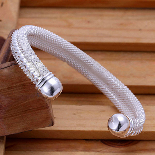 Women's Mesh Twisted Band Silver Plated Korean Style Bangle Snake Bracelet 5TWD 6SKD 7FKW 7RYG