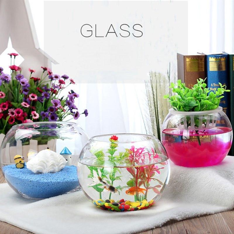 Vase boule en verre rond clair Vase en verre Aquarium réservoir de poisson boule bol fleur planteur Terrarium décoration de la maison mur boule conteneur