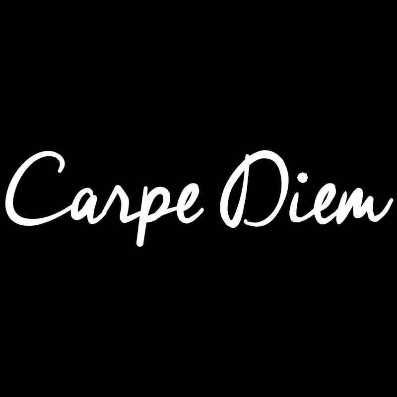 20.3*5CM CARPE DIEM Fashion Text Car Vinyl Decals Car Styling Door Stickers  Accessories Black/Silver C9 0316| | - AliExpress