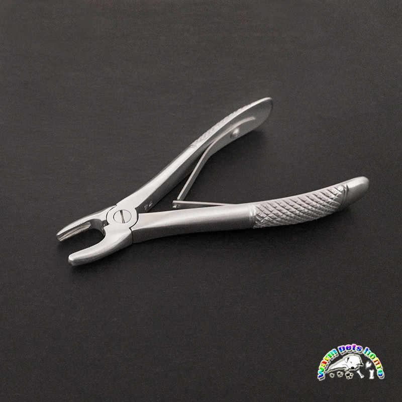 Fórceps de extracción de acero inoxidable niños mascota perro gato dientes extractor Instrumentos dentales
