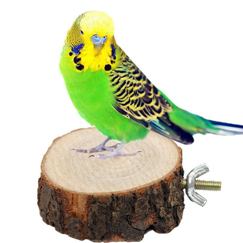 1pcs Funny Fashion Parrot Pet Bird Chew Toy Wooden Hanging Swing Birdcage Parakeet Cockatiel Cages