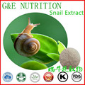 Best selling Snail Extract 200g