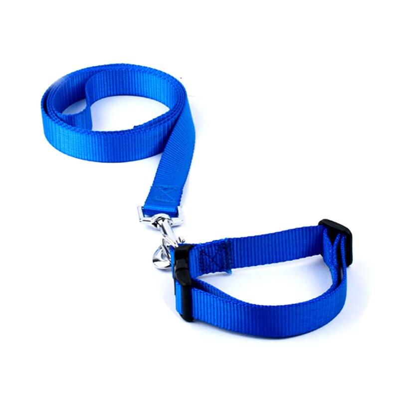 Hot Sale Nylon Solid Color Dog Collar Justerbar Pet Puppy Cat Collar - Pet produkter - Foto 6