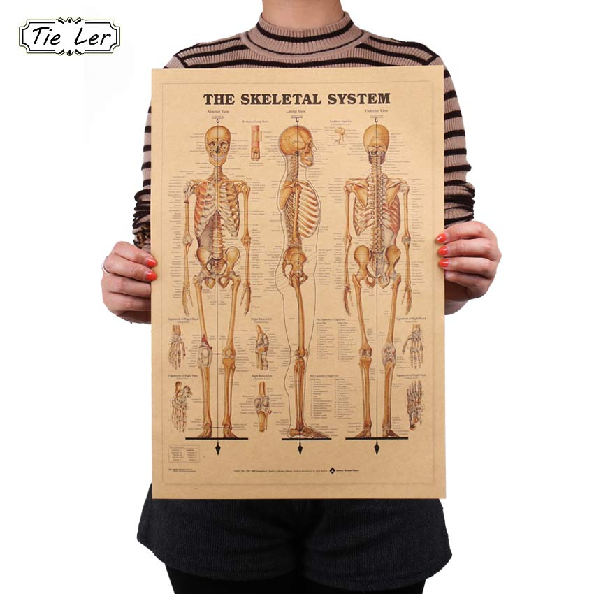 TIE LER The Skeleton of Body Structure Nervous System Poster Bar Home Decor Retro Kraft Paper Painting 42x29cm Wall Sticker