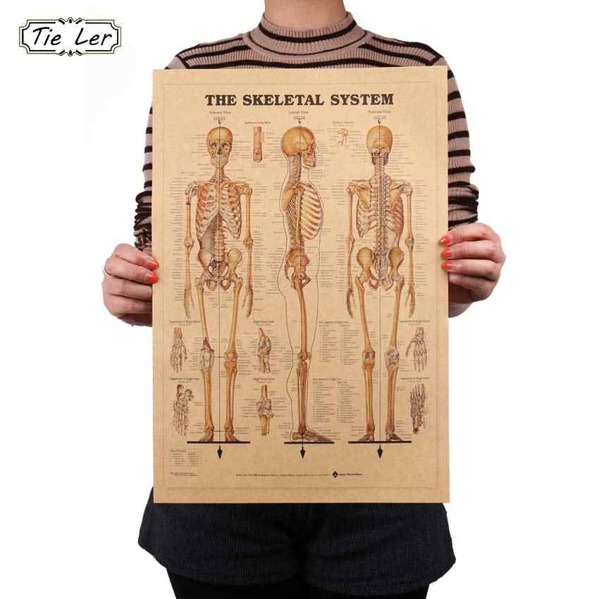 TIE LER The Skeleton of The Body Structure Nervous System Poster Bar Home Decor Retro Kraft Paper Painting 42x29cm Wall Sticker