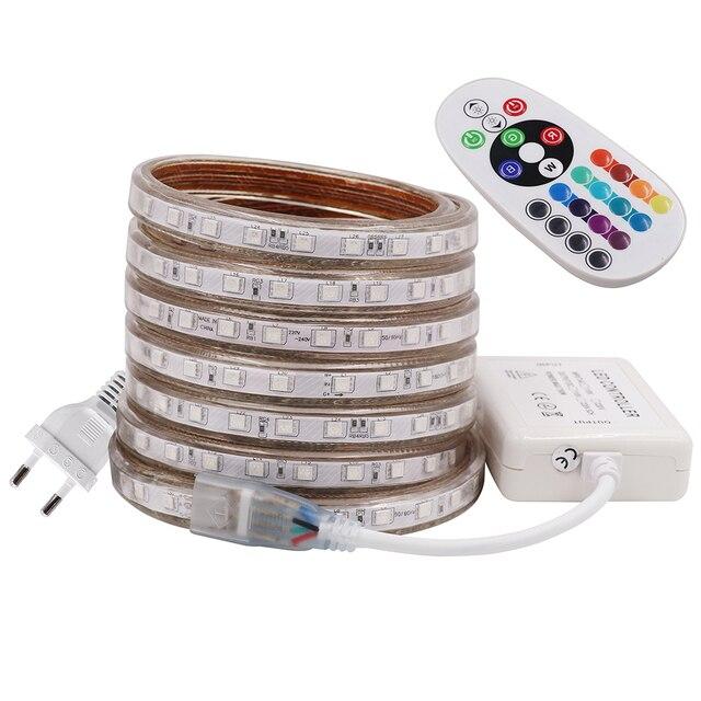 RGB LED Strip Light AC 220V SMD 5050 Flexible Waterproof LED Tape 60LEDs/m Ribbon for Garden 1M/2M/3M/4M/5M/6M/7M/8M/10M/15M/20M