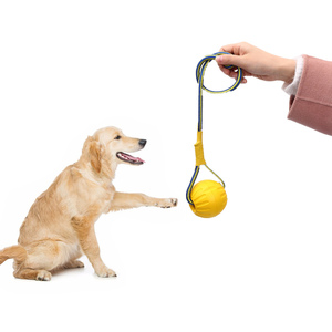 Dogs Chew Ball Training Toys Teeth Indestructible Bite Rubber Puppy Funny Balls Play Fetch Solid With Carrier Rope Pet Dog New(China)