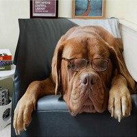 Blanket Plaid A Blanket Plaids Warmth Soft Plush Fun Labrador Wears Glasses To Sleep Plaids On